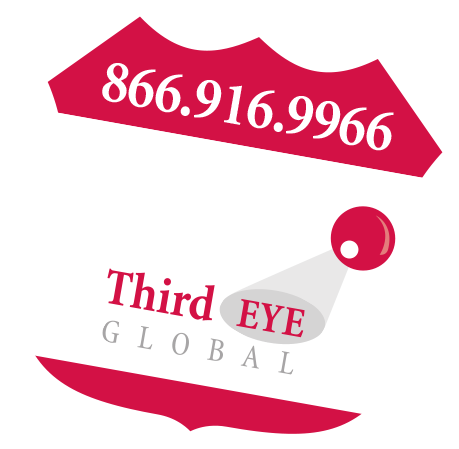 Third Eye Global badge